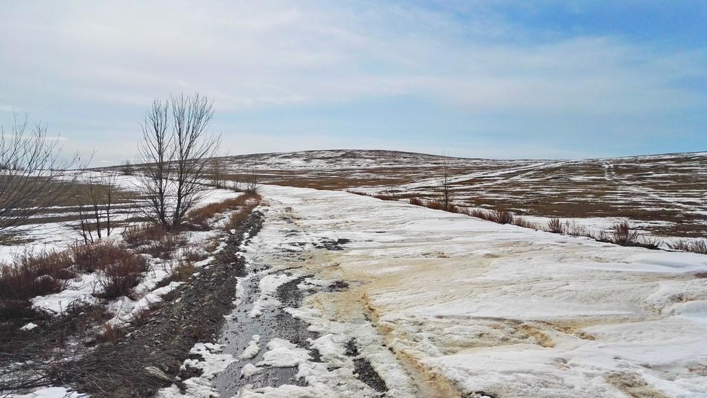Вот эта снежная пелена застелила дорогу к намеченной цели